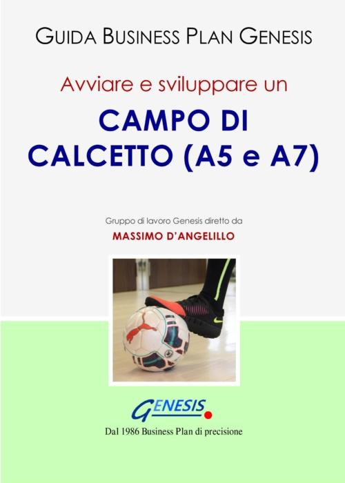 Avviare e sviluppare un CAMPO DI CALCETTO (Calcio a 5 e a 7)